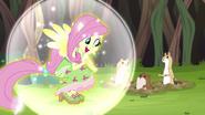 EG4 Fluttershy kucykuje