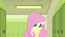 Fluttershy introduces herself EG