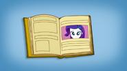 EG SS Otwarta książka ze zdjęciami