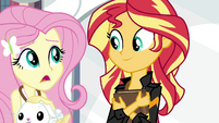 Fluttershy -still no word from Princess Twilight-- EG3