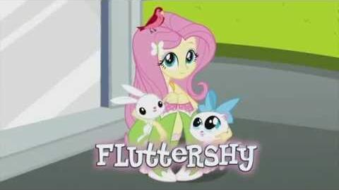 MLP Equestria Girls Rainbow Rocks - Kim jest Fluttershy?