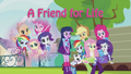 A Friend for Life music video cover.png