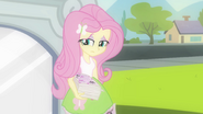 Fluttershy dropping her flyers EG