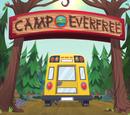 Obóz Everfree/Galeria