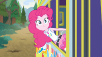 Pinkie Pie looking out at the fallen tree EGDS12