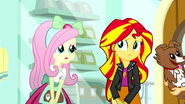 Fluttershy feels sorry for Sunset Shimmer SS7