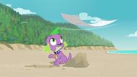 Spike sees Rarity's blanket blowing away EGFF