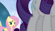"Fluttershy ""almost every day"" EG"