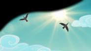 Seagulls flying over the beach EGFF