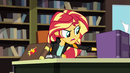Sunset Shimmer shoves papers aside EG3