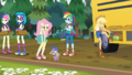 Fluttershy asking Spike about woodland creatures EG4.png