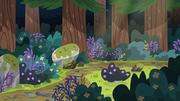 EG4 leśny szlak