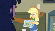 Applejack recognizes Twilight EG