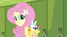 Fluttershy with animal friends EG