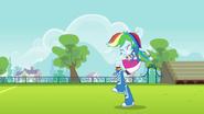 EG Triumf Rainbow