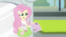 Fluttershy handing out flyers EG