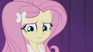 "Fluttershy ""don't know why I even asked"" EG2"
