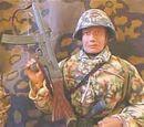Stahlhelm M1945