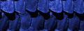 Miniatura della versione delle 14:34, gen 1, 2012