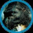 Icon-Drachen