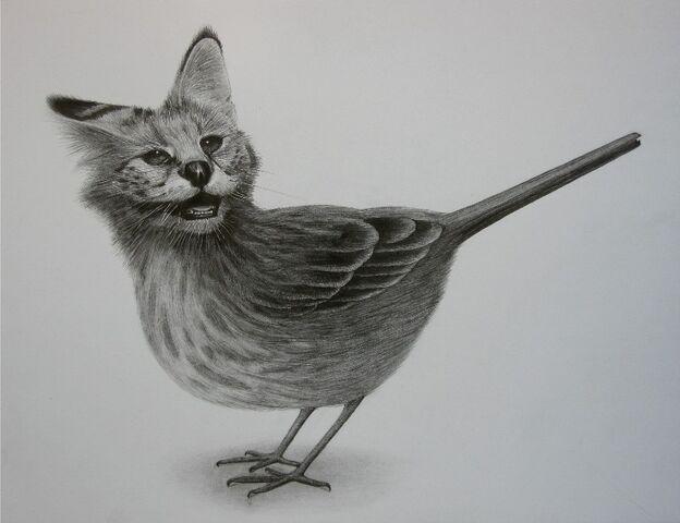 File:5 CatBird.jpg