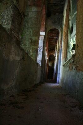 The Corridor by Sensible