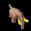 Hog rider b