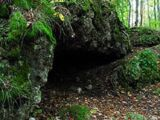 Forest/Hidden Cave/Entrance