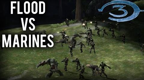 Halo 3 - AI Battle - Flood vs Marines