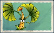 Banana Tree Seed Packet