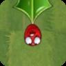 Holly Barrier Leaf2