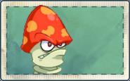 Digest Mushroom Seed Packet