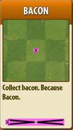 Bacon Almanac Info