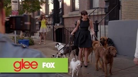 "Rachel Gives Birth to 'Broadway Bitches' from ""Old Dog New Tricks"" GLEE"