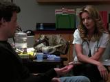 Relación:Terri y Finn
