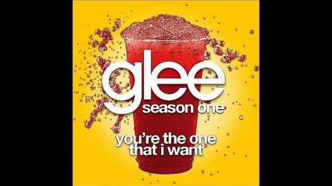 Glee - You're The One That I Want