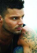 Ricky Martin ficha personal