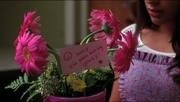 Flores de Rachel Ballad