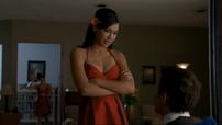 Santana finn
