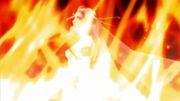 Cosmos incinerada