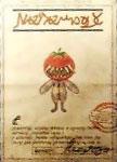 Tomate Perdido3