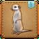 FFXIV Meerkat Minion Patch