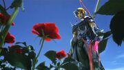 Firion y las Rosas Salvajes