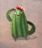 Cactus Floral FFXII