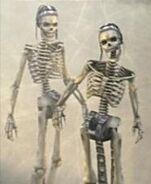 Esqueleto FFXII