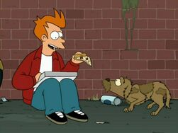 Fry Pizza 800