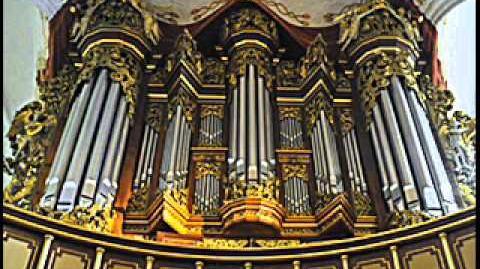 Buxtehude & Bruhns Organ Works,Ton Koopman