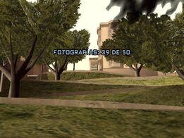 Fotografía 39