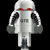 Bot GTE