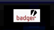 Mensaje Badger